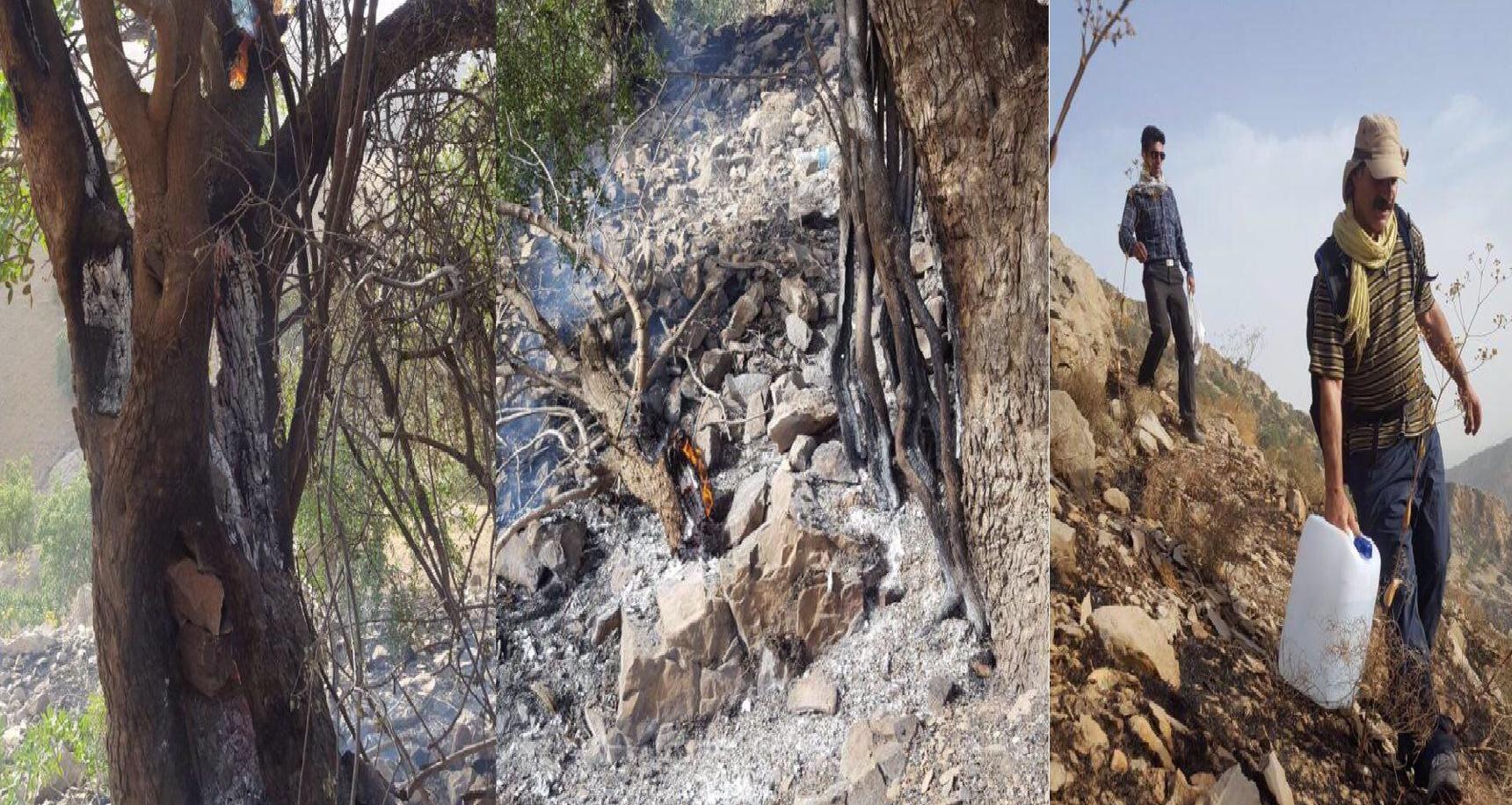 Regions of the East Kurdistan was burned.