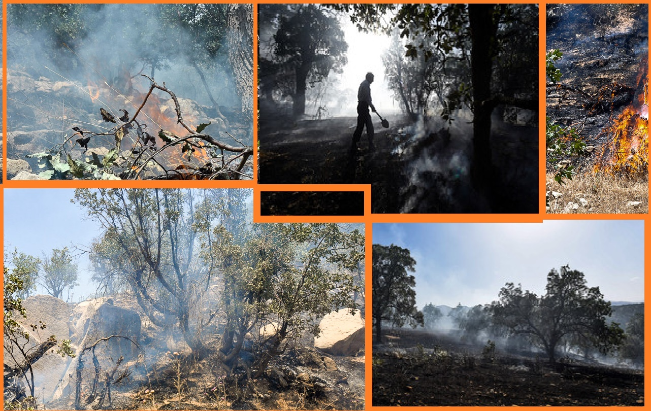 Fire the chains in zagros forests