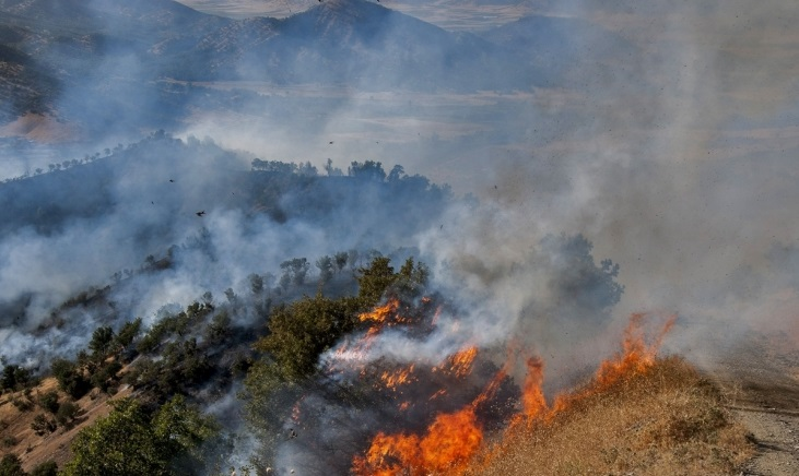 Shelling around Marivan by military forces again was causing a fire in the forest.