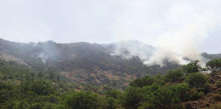 A fire inflicted damage to 100 hectares of Maremishu forest in Urmia