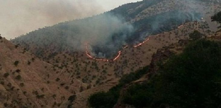 More than 6 hectares of Paveh rangelands are burnt.