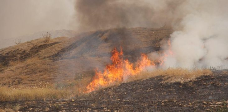 The continuity of fire forests and rangelands in east Kurdistan and the widespread destruction of the environment