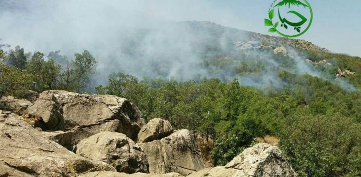 Thousands of hectares of Kousalan forests burned in the fire.