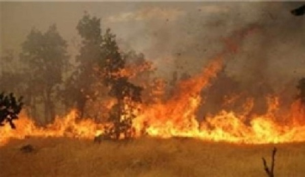 """The continuity of fires in the beautiful nature of """"Paveh"""" and """"Javanrood"""" in eastern Kurdistan"""