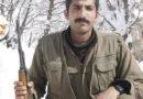 Iranian Secret Service: It is forbidden to hold a funeral for Hossein Kamkar