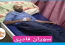 Marivan; A kolbar was injured due to armed force shot